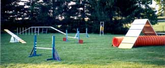 Photo of Agility Equipment