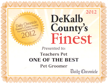 Award - One of the Best Groomers
