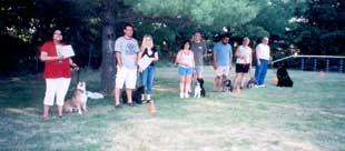 Photo of Group Obedience Class