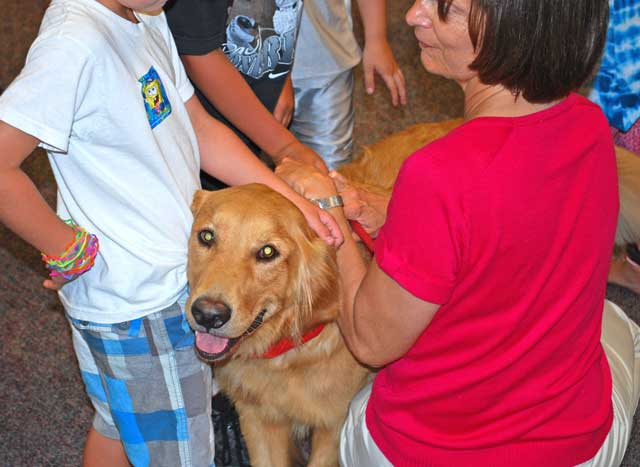 Therapy Dogs and Schools  The Educators Room
